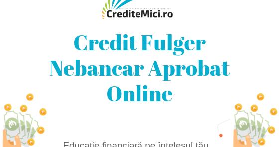 Credit rapid pana la salariu online